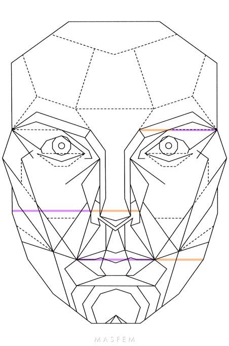 Идеальные пропорции лица и